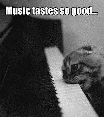 music tastes